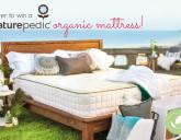 Mommy Greenest Pregnancy Book Organic Mattress Giveaway